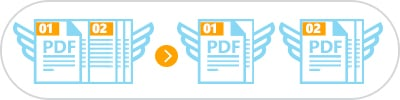 split pdf by invoice number